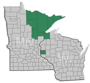 Northeastern-Minnesota-Northwestern-Wisconsin